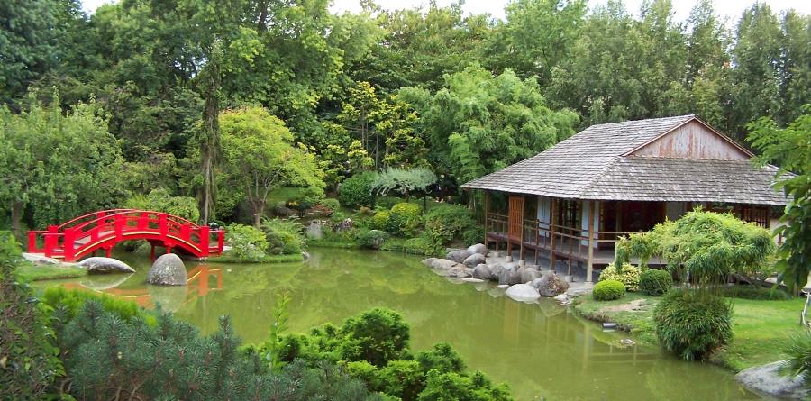 Jardin japonais, du plaisir pour les yeux !