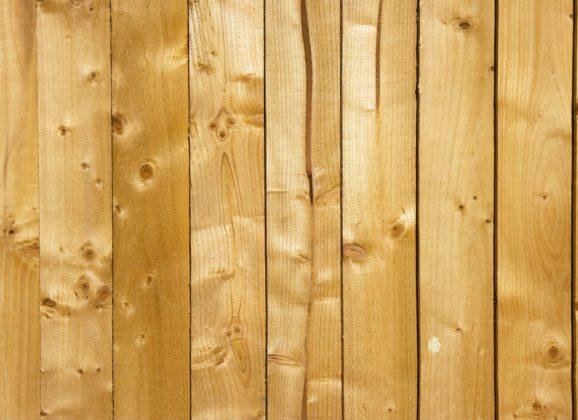 Parquet en pin : un matériau intemporel pour votre rénovation intérieure